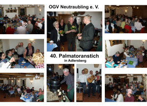 40-Palmatoranstich Collage komp