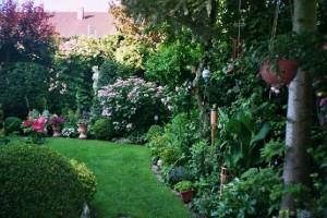 """Herr M. Barth (Kategorie """"Haus, Garten, Blumen"""")"""